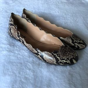 Fidel scalloped flats by Atwell - snakeskin print
